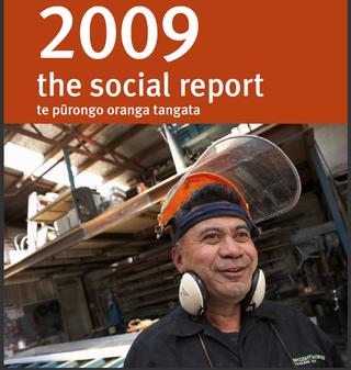 MSD social report 2009