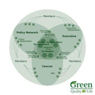 Green Party 2010 democracy - Bryce Edwards