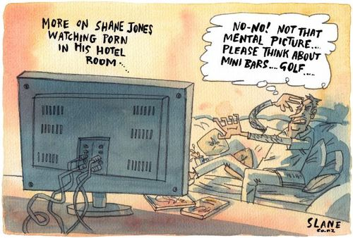 Shane Jones perks scandal - bryce edwards