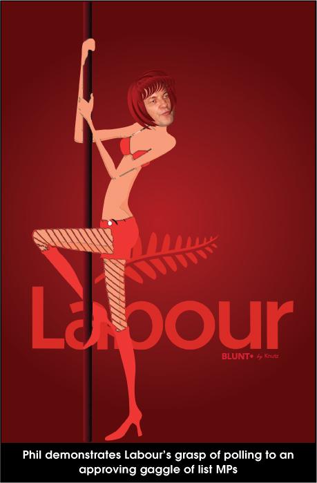 Poll-Dance NZ Politics Daily - Bryce Edwards Otago University liberation blog - www.liberation.org.nz