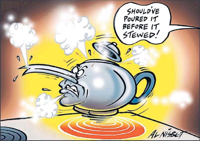 Teapot tapes epsom NZ Politics Daily - Bryce Edwards Otago University liberation blog - www.liberation.org.nz