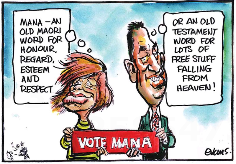 Sue Bradford Mana Party NZ Politics Daily - Bryce Edwards Otago University liberation blog - www.liberation.org.nz