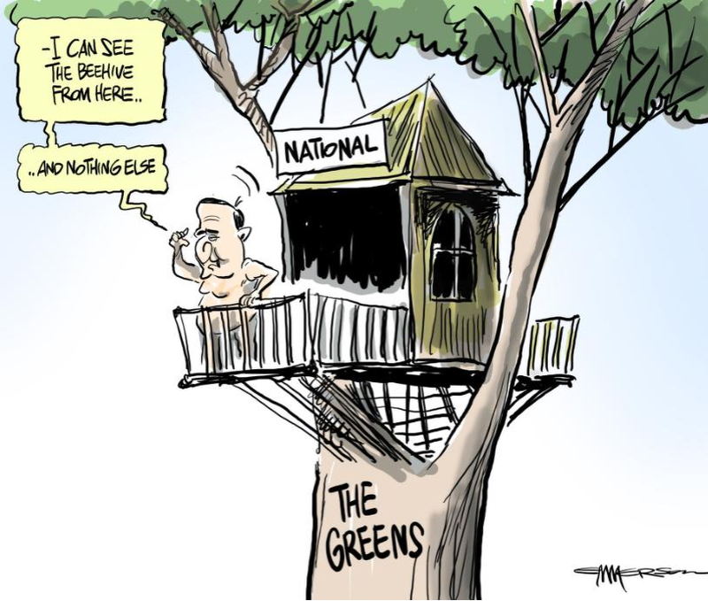 National Greens Niki Lomax NZ Politics Daily - Bryce Edwards Otago University liberation blog - www.liberation.org.nz