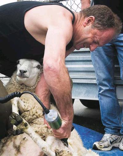 1 david shearer shearingNZPD, NZ Politics Daily