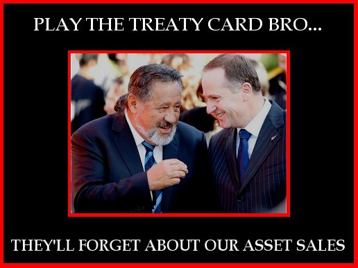 7 treaty card iwi water asset sales NZ Politics Daily - Bryce Edwards Otago University liberation blog - www.liberation.org.nz