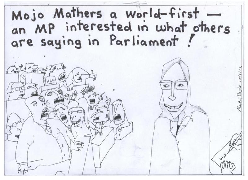 9 mojo mathers green party NZ Politics Daily - Bryce Edwards Otago University liberation blog - www.liberation.org.nz