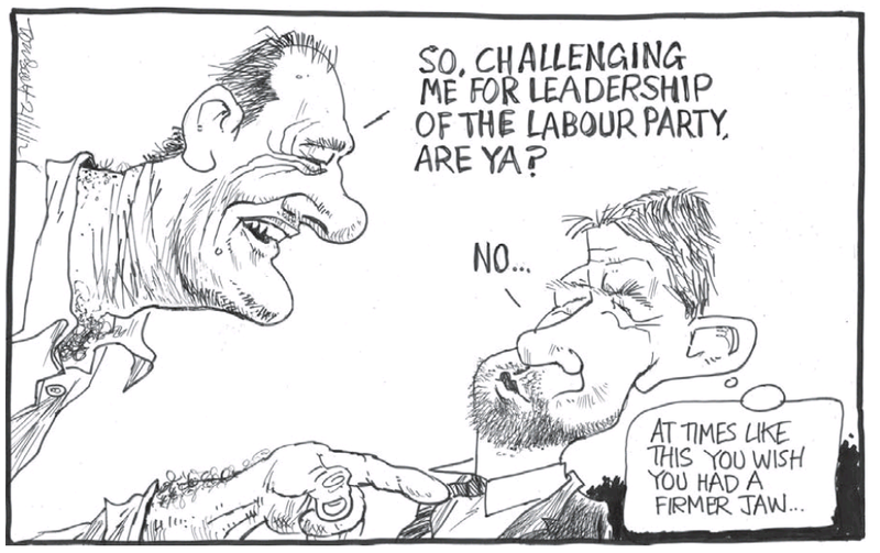 2 Labour Party David Shearer Cunliffe NZ Politics Daily - Bryce Edwards Otago University liberation blog - www.liberation.org.nz