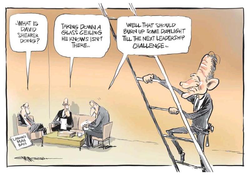 NZ Herald 6 July 2013 Labour Shearer