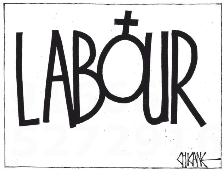 Southland Times 5 July 2013 Labour man ban
