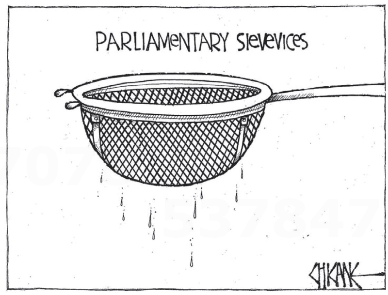 Southland Times 31 July 2013 media spying Parliamentary Sievevices