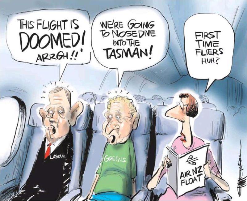 2 Emmerson - NZ Herald 19 November 2013 asset sales Greens Labour Air NZ
