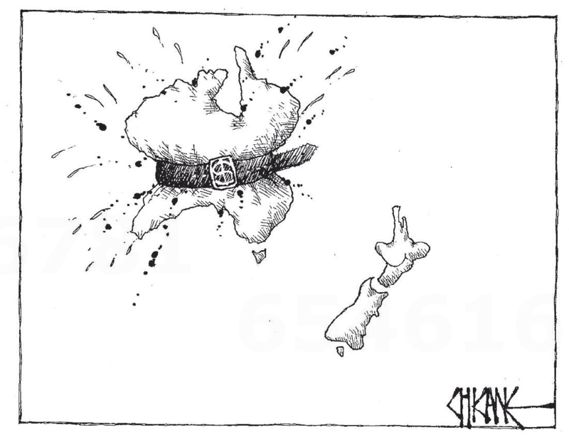 Chicane - Southland Times 15 May 2014 The Budget
