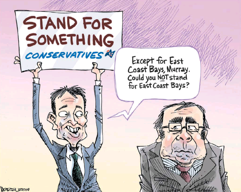 Moreu - Nelson Mail 24 June 2014 Conservatives East Coast Bays coalition