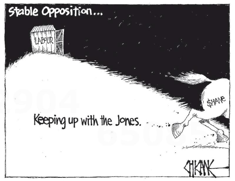 Chicane - Southland Times 24 April 2014 Shane Jones Labour
