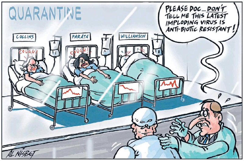 Nisbet - Sunday Star Times 4 May 2014 Maurice Williamson Judith Colllins National