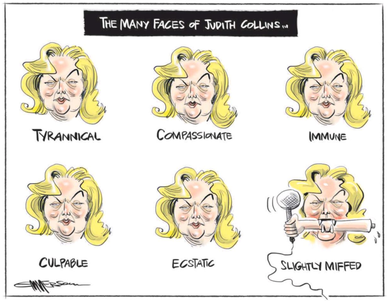 Emmerson - NZ Herald 6 May 2014 Judith Collins National