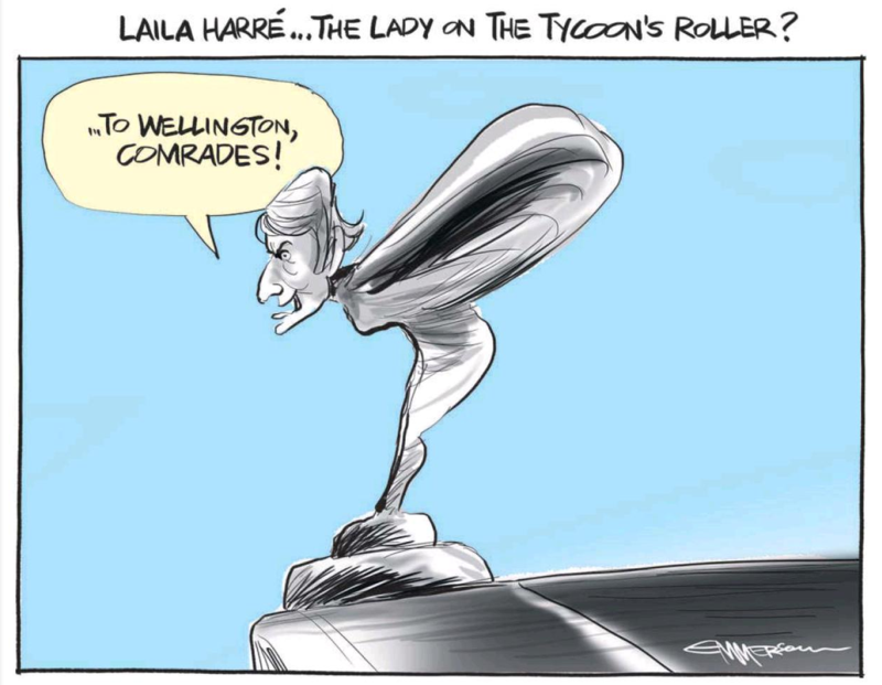 Emmerson - NZ Herald 29 May 2014 Laila Harre Internet Mana Party