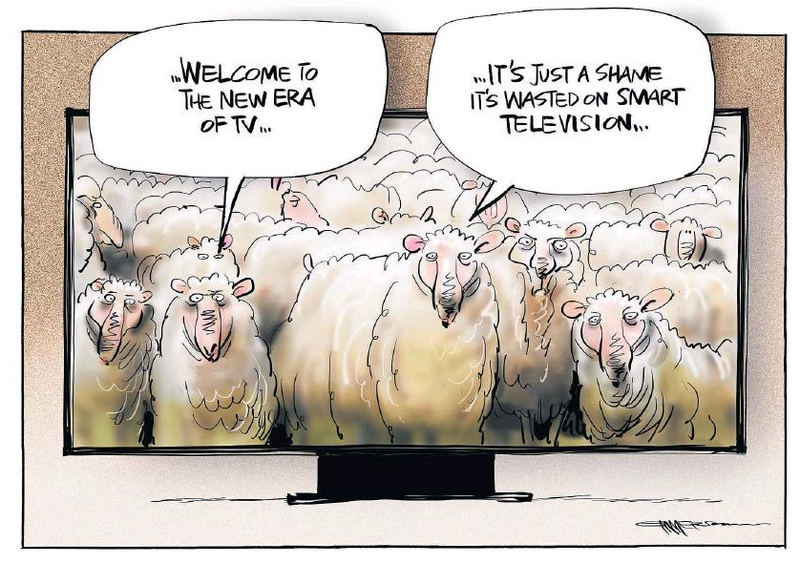 Emmerson - NZ Herald 11  April 2015 John Campbell Live media TV