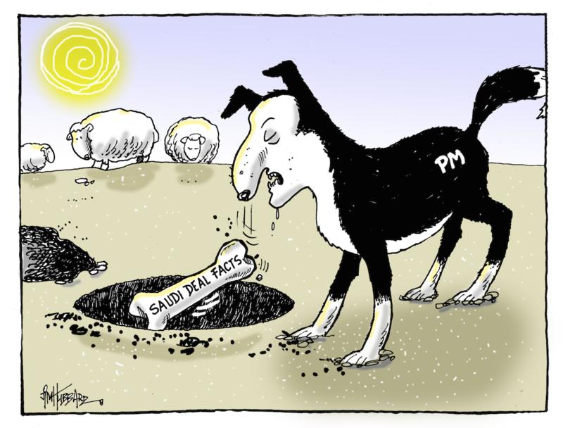 Hubbard - 23 June 2015 Saudi sheep
