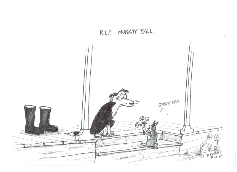 Murray Ball by @DavidTHealy1