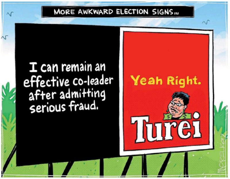 Moreu - Timaru Herald 5 August 2017 Turei Greens