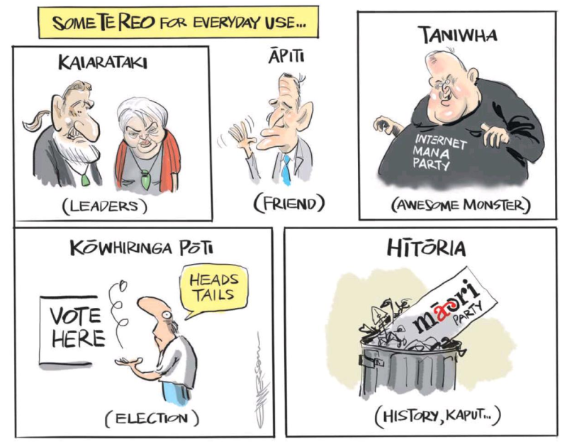 Emmerson - NZ Herald 23 July 2014 Maori Party