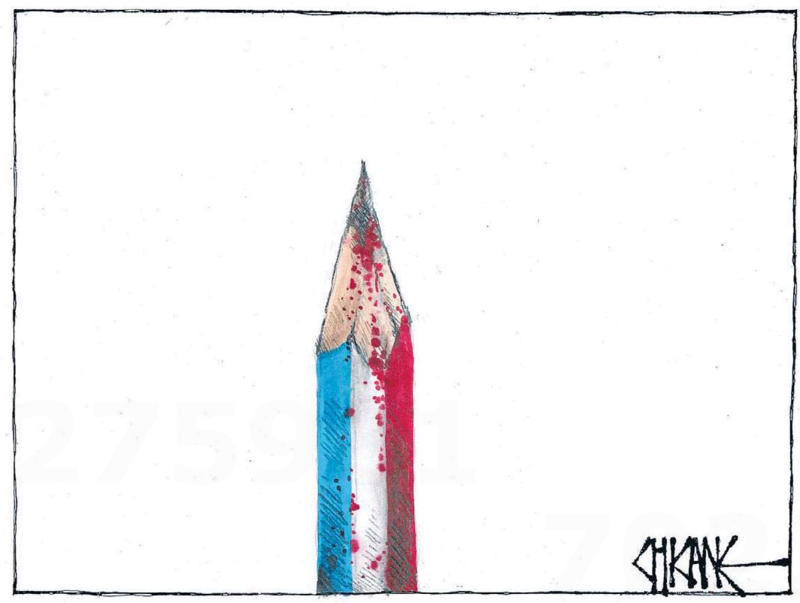 Chicane - Southland Times 9 January 2015 jesuischarlie