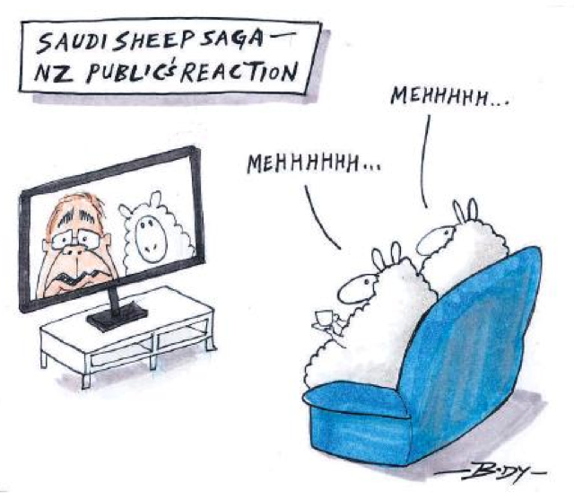 Body - NZ Herald 6 June 2015 sheep saudi