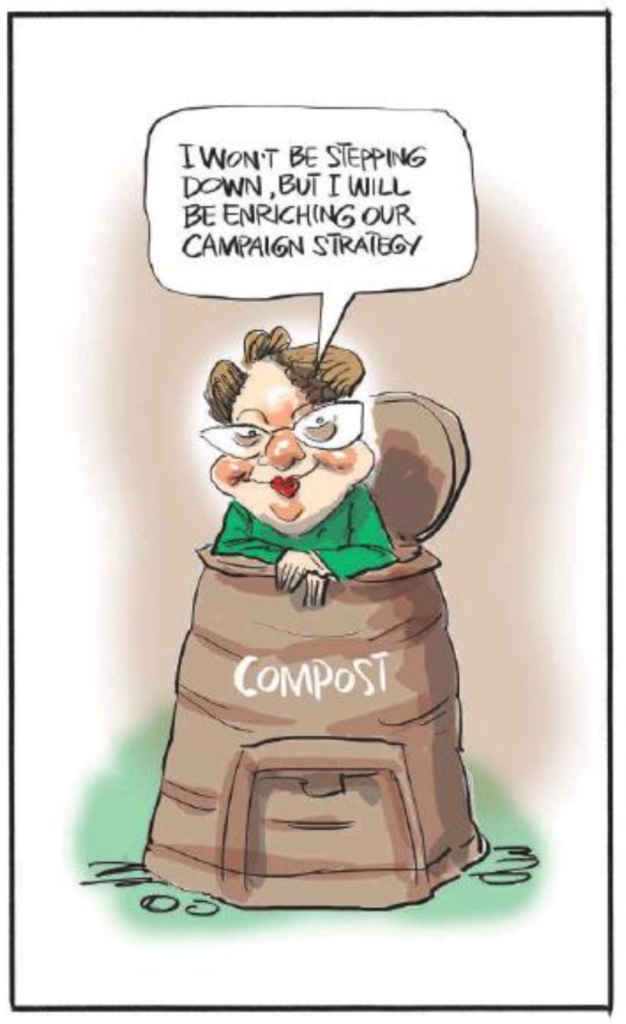 Emmerson - NZ Herald 5 August 2017 Greens Metiria Turei