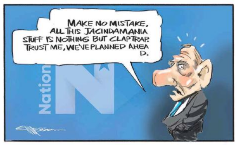 Emmerson - NZ Herald 5 August 2017 National Jacinda Ardern Bill English