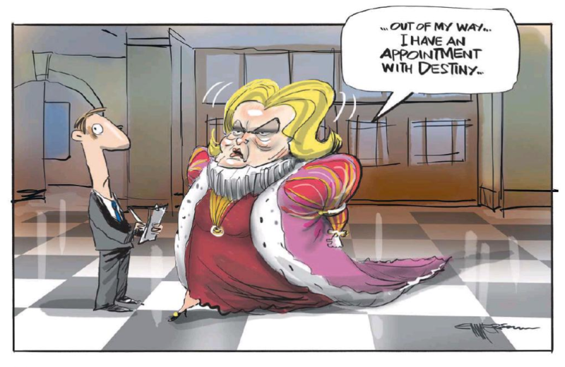 Emmerson - NZ Herald 6 December 2016 Judith Collins National