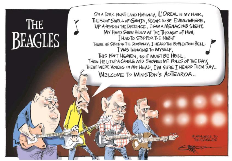 Emmerson - NZ Herald 14 March 2015 Northland by-election