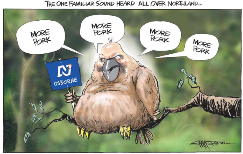 Emmerson - NZ Herald 19 March 2015 Northland by-election