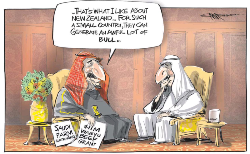 Emmerson - NZ Herald 10 June 2015 Saudi sheep