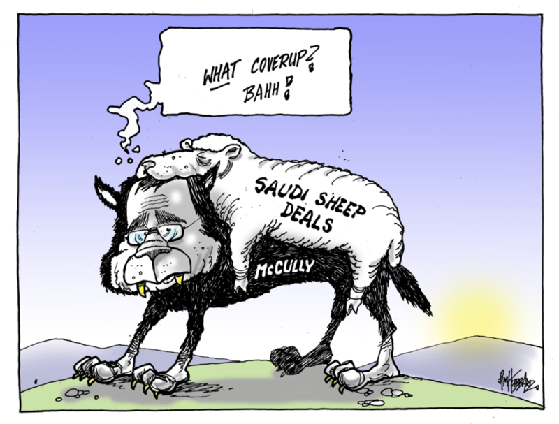 Hubbard - 6 August 2015 Saudi sheep