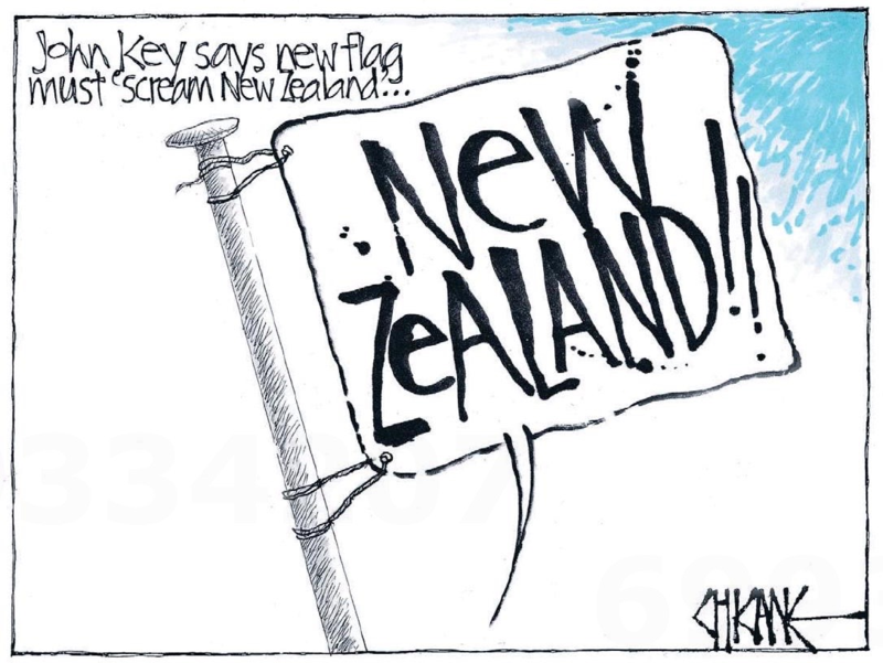 Chicane - Southland Times 19 December 2014 flag debate