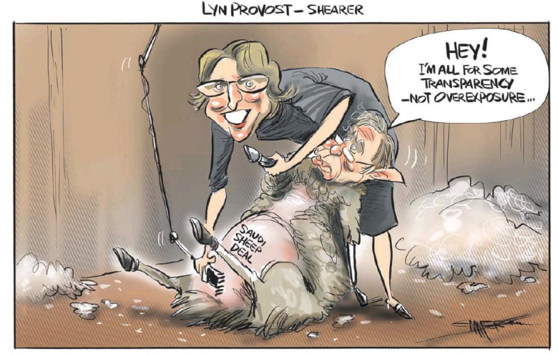 Emmerson - NZ Herald 3 November 2016 mccully OAG corruption saudi sheep