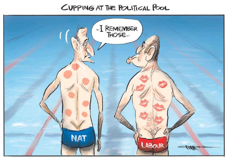 Emmerson - NZ Herald 13 August 2016 Little Key polls Labour National