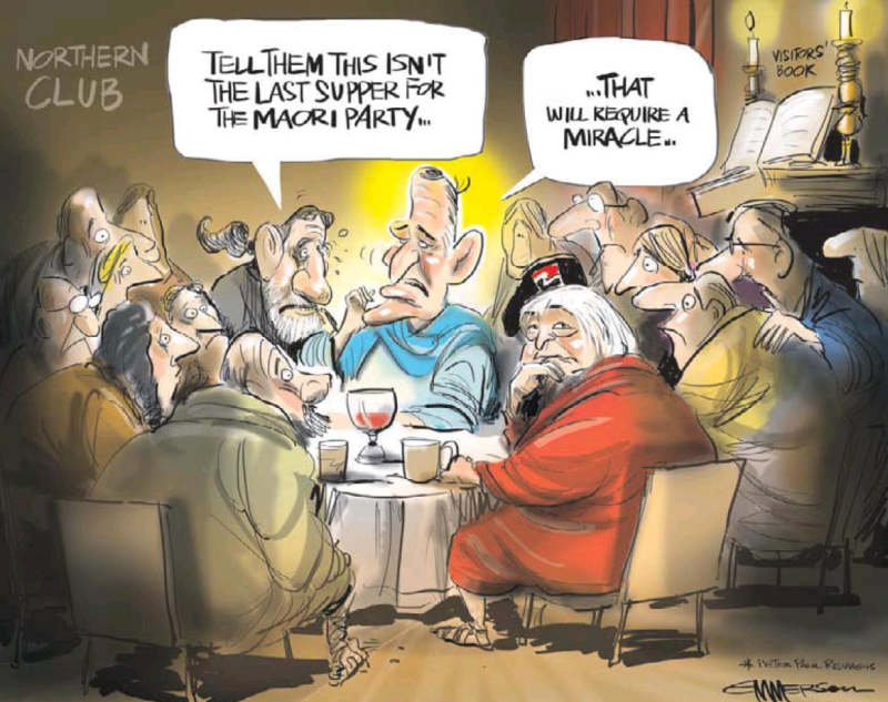 Emmerson - NZ Herald 15 April 2014 Maori Party political finance donations john Key
