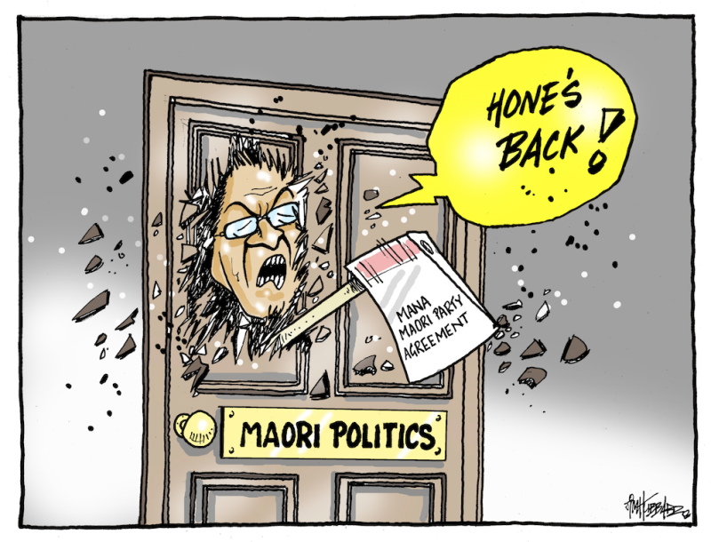 Hubbard - 22 February 2017 Hone Harawira maori mana