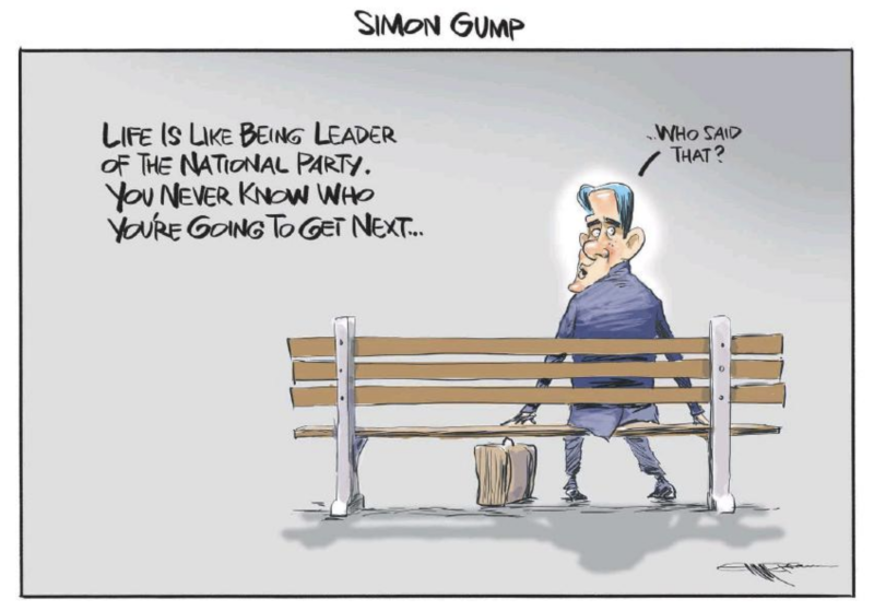 Emmerson - NZ Herald 15 December 2018 Bridges National