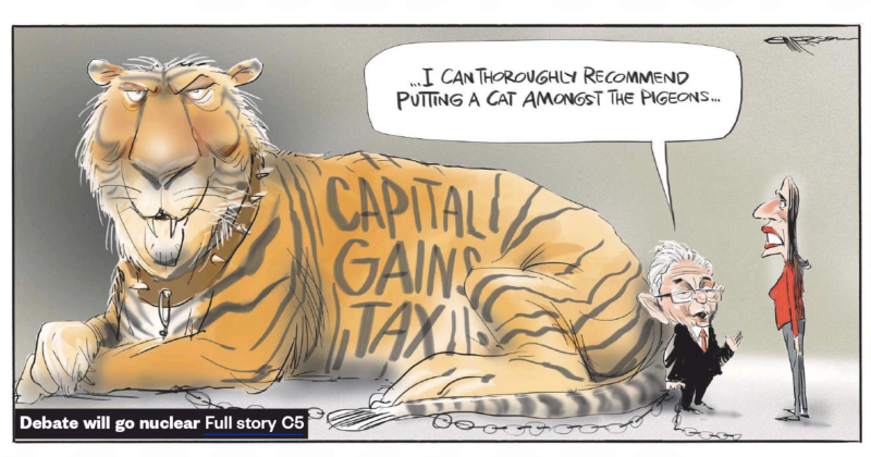 Emmerson - NZ Herald 26 January 2019 capital gains tax