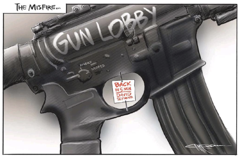 Emmerson - NZ Herald 3 April 2019 Guns Seymour Christchurch