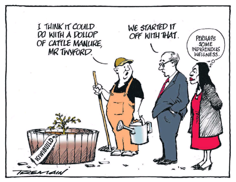 Tremain - ODT 2 February 2019 Kiwibuild