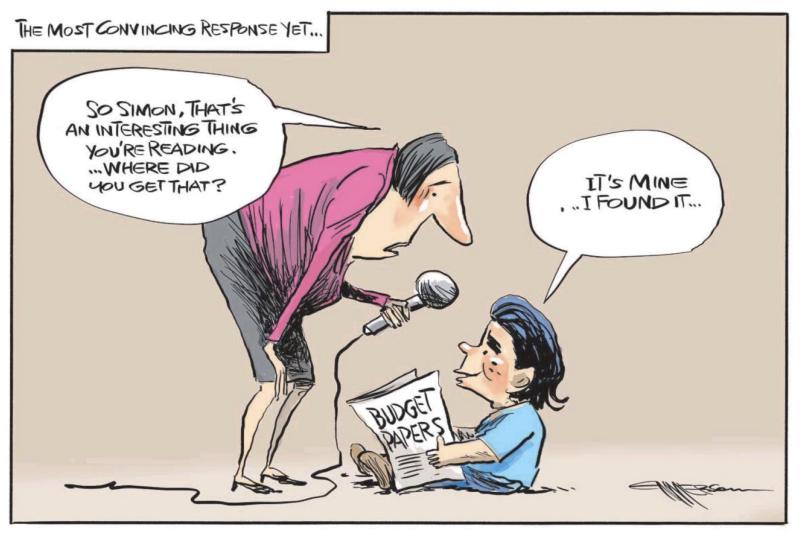 Emmerson - NZ Herald 30 May 2019 National Budget Bridges