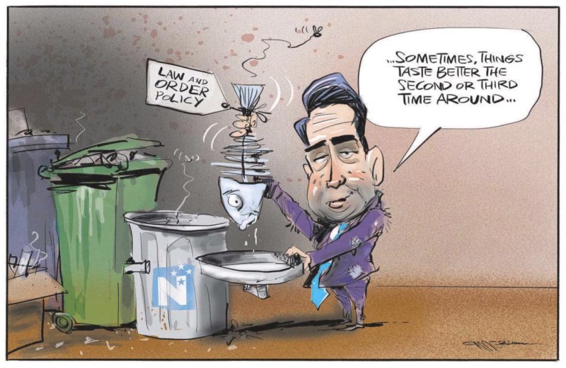 Emmerson - NZ Herald 27 November 2019 Bridges National law order justice