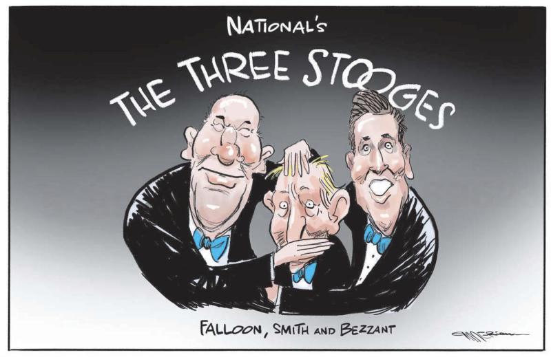 Emmerson - NZ Herald 4 June 2021 National Smith