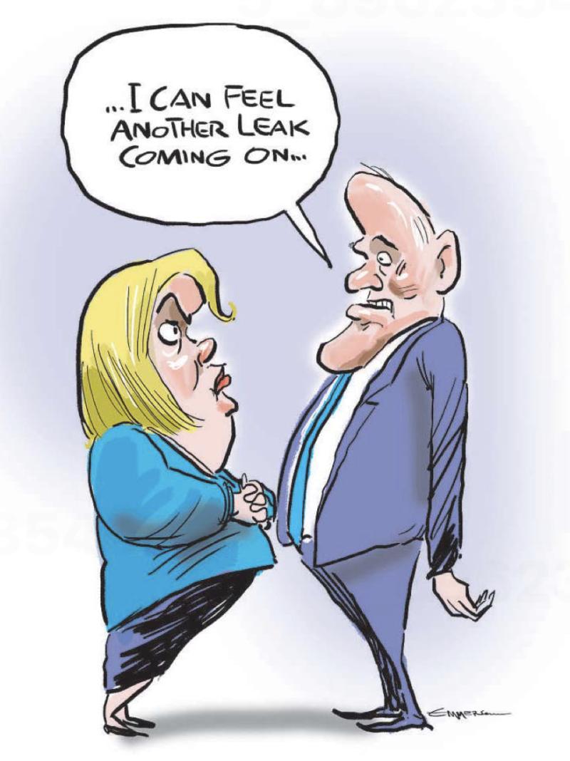 Emmerson - NZ Herald 25 June 2021 national collins