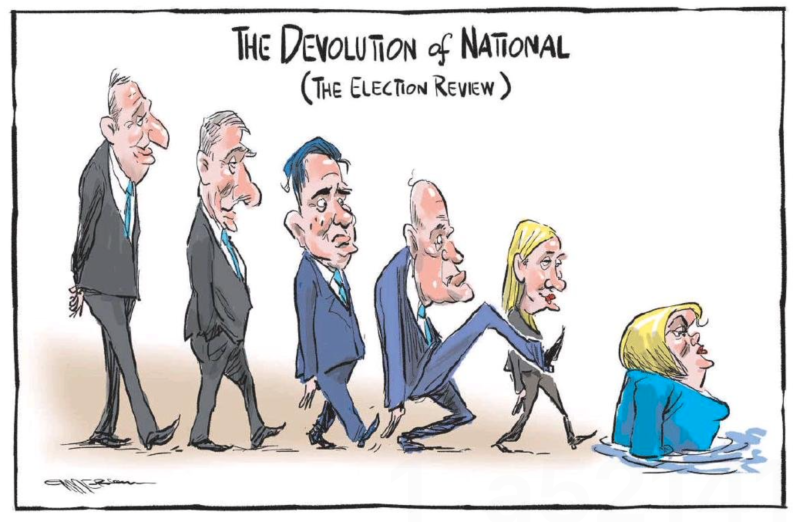 Emmerson - NZ Herald 30 April 2021 National Collins