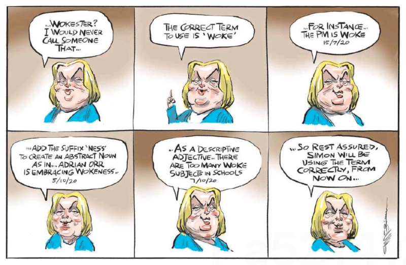 Emmerson - NZ Herald 25 February 2021 National Collins woke police